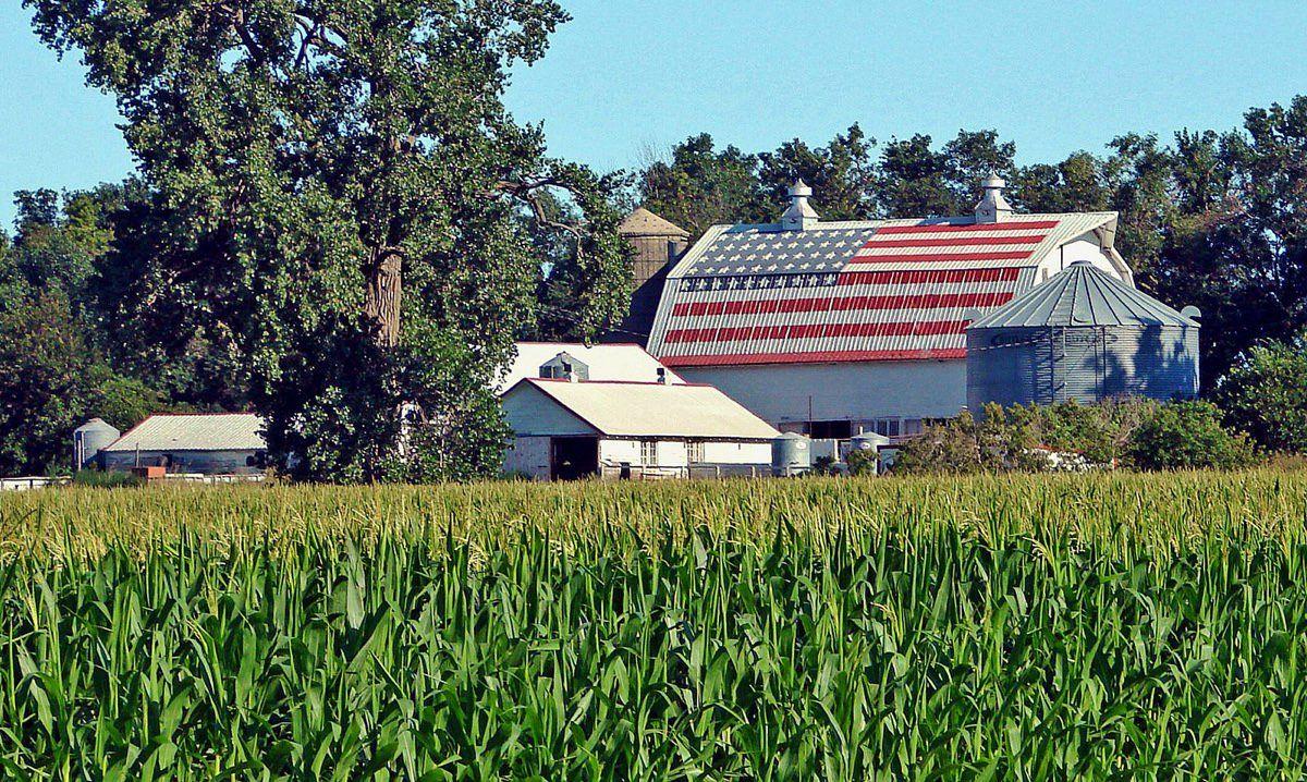 کشاورزی در آمریکا