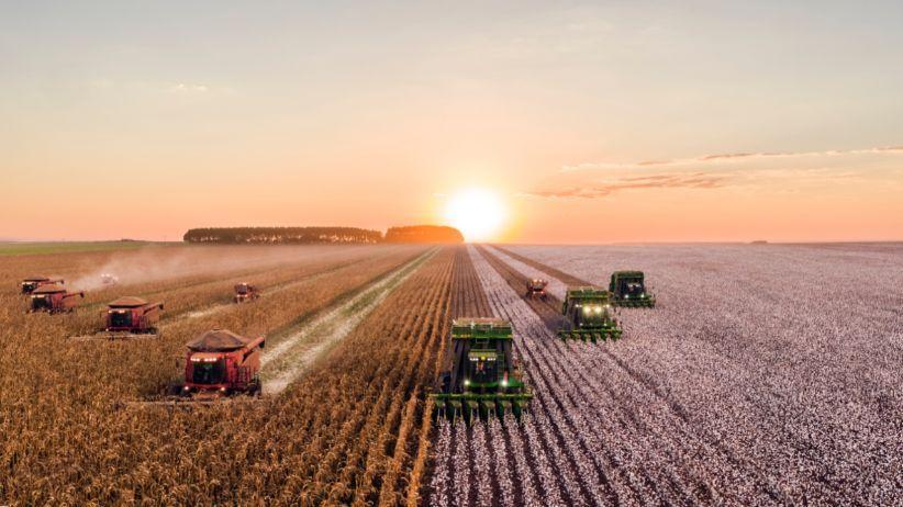 کشاورزی در برزیل