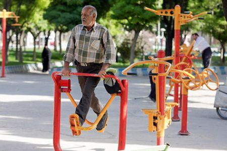 لوازم ورزشی پارکی