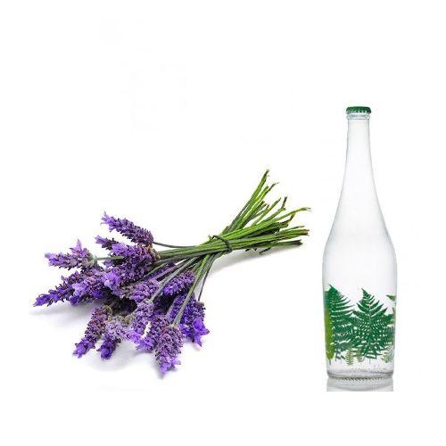بهرترین عرق های گیاهی برای بدن